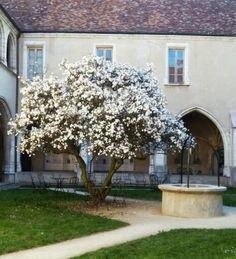 Bourg-en-Bresse... un belle journée !