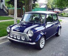 A purple mini wow. Favourite and colour