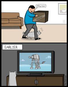 What did Star Wars teach you?