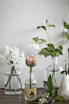 The Shop - such delicate flowers. Use vintage bottle fines as vases and simple bouquet from your neighborhood florist. Spread throughout the house for a unique look, not to mention cheaper than having 5 bouquets around the house