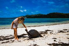 Australia Hotels - Amazing Deals on Hotels in Australia Maldives, Les Seychelles, Voyager Seul, Destinations, Australia Hotels, Voyage Europe, View Map, Cheap Travel, Hotel Deals