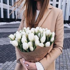 Buy me white tulips, you'd be my new favorite person.