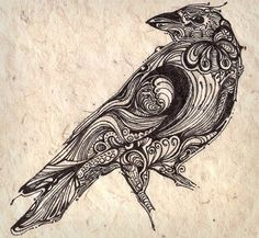 Very cool line drawing of a Crow.