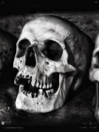 Resultado de imagen para skull reference