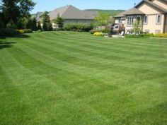Mowing by Uniformed, Trained, Fully Insured Lawn Care Crews  http://www.lawnconnections.com/lawn-mowing-service