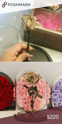 Gold rose Japanese real rose gold color 3 years warranty life Amour Diseno Floral  Accessories
