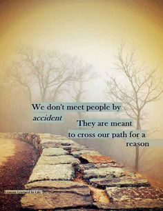 We don't meet people by accident. They are meant to cross our path for a reason (Lessons Learned in Life) Good Quotes, Life Quotes Love, Famous Quotes, Quotes To Live By, Inspirational Quotes, Awesome Quotes, Meaningful Quotes, Motivational Quotes, Life Sayings