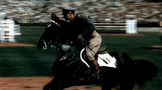 Mexico takes Equestrian Jumping gold at Wembley Stadium - London 1948 Olympic Games. Narrated video