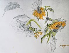 paintings sunflowers water colors   ... Berg Victor   Botanical Art, Paintings, Watercolors and Illustrations