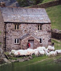 British countryside and Herdwick sheep. (****Possibly in the Lake District of Cumbria in North West England. Stone Cottages, Stone Houses, Country Cottages, Scottish Cottages, Irish Cottage, Cozy Cottage, Country Life, Country Living, British Countryside