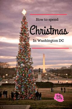 Will you be spending Christmas in Washington, DC? Here's a list of the best things to do in the city during the holiday season! travel Christmas in Washington, DC Christmas In Dc, Best Christmas Markets, Christmas Events, Christmas Travel, Christmas Vacation, Holiday Travel, Winter Travel, Christmas Trips, Washington Dc Travel