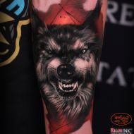 wolf tattooddd Wolf Spirit, Dream Tattoos, Animal Tattoos, Portrait, Animals, Pet Tattoo Ideas, Animais, Animales, Headshot Photography