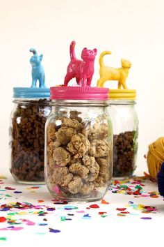Crunchy Cat Treats ~ the jars shown in these photographs would make amazing gift jars - just add treats!