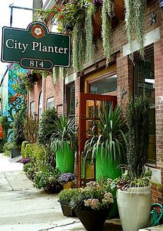 City Planter's store front in full summer glory