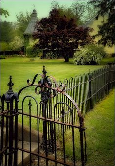 Rod iron garden gate and fence