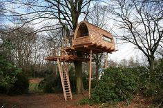 Tree House - Examples from around the world