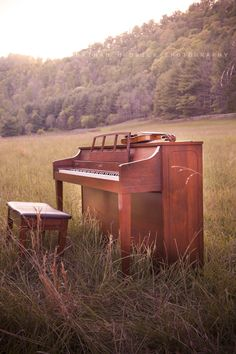 Give an outdoor Recital to Family and Friends...make the effort of moving my piano outdoors for just one day.