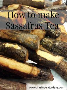How to make Sassafras Tea from Chasing Saturdays Alternative Energiequellen, Tea Recipes, Healthy Recipes, Sassafras Tea, Yummy Drinks, Yummy Food, Chai Tea Recipe, Fermentation Recipes, Amigurumi