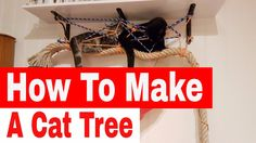 Make Your Own Cat Trees, Towers, and Other Structures - DIY Cat Tree