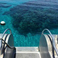 Come on in the water's warm. The Great Barrier Reef captured by @brookenikora #openmyworld #greatbarrierreef @queensland #australia by flightcentreuk http://ift.tt/1UokkV2