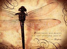 Todo tiene belleza, pero no todos la ven