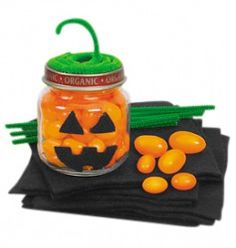 Make your own Jack-a-Lantern with this Art Activity
