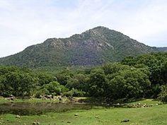 Sierra de los Alcornocales su Fauna  y su flora