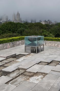Pierre Huyghe incorporates primordial elements into Met rooftop installation in New York.
