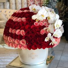 Phalaenopsis Orchid, Orchids, Peony Colors, Red And Pink Roses, Same Day Flower Delivery, Custom Greeting Cards, Amazing Flowers, Fresh Flowers, Floral Arrangements
