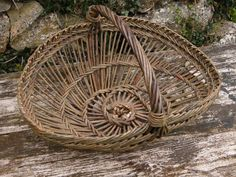 Perigord Basket | Course taught in France