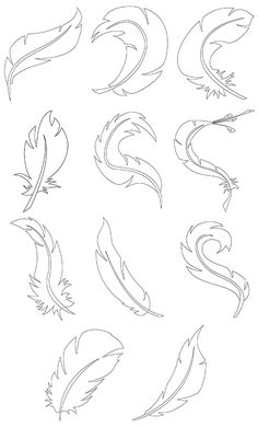 A doodle feather you can color the way you want.  Or fill it with fun patterns and shapes.  Just have fun with it.  You can download 3 free feathers or purchase the sample book that has 11.  After you make your master piece cut them out and make something fun! http://colorbook4nerdlings.com/shop/doodle-feathers/