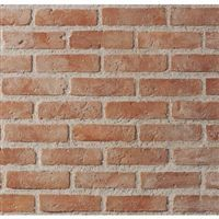 Tridome 36 M2 Plaquette De Parement Florence Modulo Briquette De Parement Comment Deboucher Un Evier Deboucher Evier