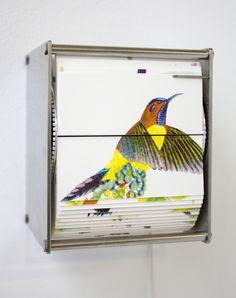 Juan Fontanive, 'Ornithology P,' 2014, Conduit Gallery