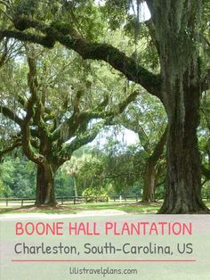 Boone Hall Plantation, Charleston, South-Carolina, USA