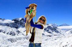 A história de Rupee é encantadora: achado na rua, com fome, em um lixão no norte da Índia, o cão foi resgatado por Joanne Lefson. Pra lhe devolver a energia, a dona iniciou uma dieta rica em proteínas, com direito a doses generosas de ovo cozido e arroz. Rupee ficou tão forte que acabou fazendo história ao se tornar o primeiro cão a escalar o Monte Everest. Durante 10 dias, o cachorro caminhou lado a lado com Joanne Lefson e conseguiu chegar a um ponto 17 mil pés acima do nível do mar. A…