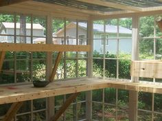 11 Greenhouse Project All from old windows cept the roof and wood for shelves inside. I went to get TWO old windows for free and my hubby loaded up the truck!! Had no Angelia Christenson Comment 120 Like 407 Clip 339 Share #greenhouseideas Diy Greenhouse Plans, Greenhouse Supplies, Homemade Greenhouse, Lean To Greenhouse, Outdoor Greenhouse, Cheap Greenhouse, Greenhouse Growing, Portable Greenhouse, Greenhouse Shelves