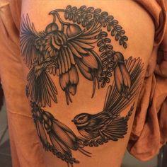 tui bird tattoo - Google Search