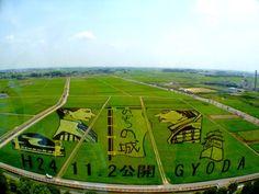 Rice Field Art, Japan