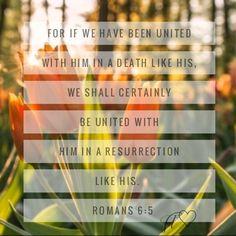 Faith Moves Mountains, Move Mountains, Romans, Pray, Death, The Unit, God, Sayings, Dios