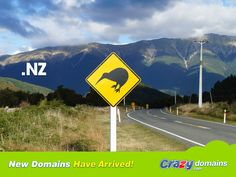 Done with the dusty old CO.NZ domain? Now you can be simply and cleanly just .NZ http://www.crazydomains.com/?tld=nz&pipromo