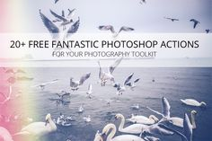 20  Fantastic Free Photoshop Actions for Your Photography Toolkit