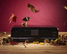 Epson Expression Photo XP-950 review: the A3 printer in an A4 printer's body Camera World, Epson, Printers, A3, Digital Camera, In This Moment, Tools, Photography, Instruments
