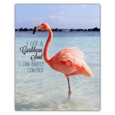 It's Friday and it's #FlamingoFriday! Woo hoo! . Who else has a Caribbean soul??? ⛱🌴🌞 . etsy.com/listing/293007757 . #CaribbeanSoul…