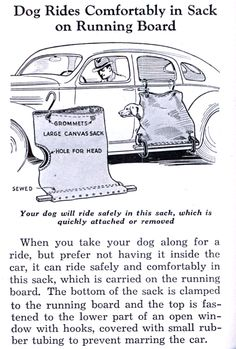 Vintage Ad - Dog Rides Comfortably in Sack on the Running Board.  How awful!!!