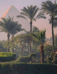 Giza, Painting, Art, Art Background, Painting Art, Kunst, Paintings, Performing Arts, Painted Canvas