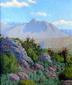 Volschenk, Jan Ernst Abraham   The Mozambiquerskop   Oil on Canvas   Code : 7466    Size : 355 x 305mm   Sold.