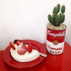 present.❤️ #cake#strawberry#cactus#red#birthday#gift#CDL