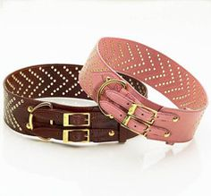 Studded Leather Dog Collars - for larger dogs.