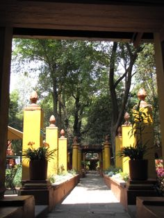Vista a la entrada del jardín de la Fonoteca desde el patio frontal.