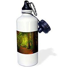 CEDAR ALLEY TRAIL - 21 oz Sports Water Bottle (wb_245745_1)  by 3dRose LLC  Link: